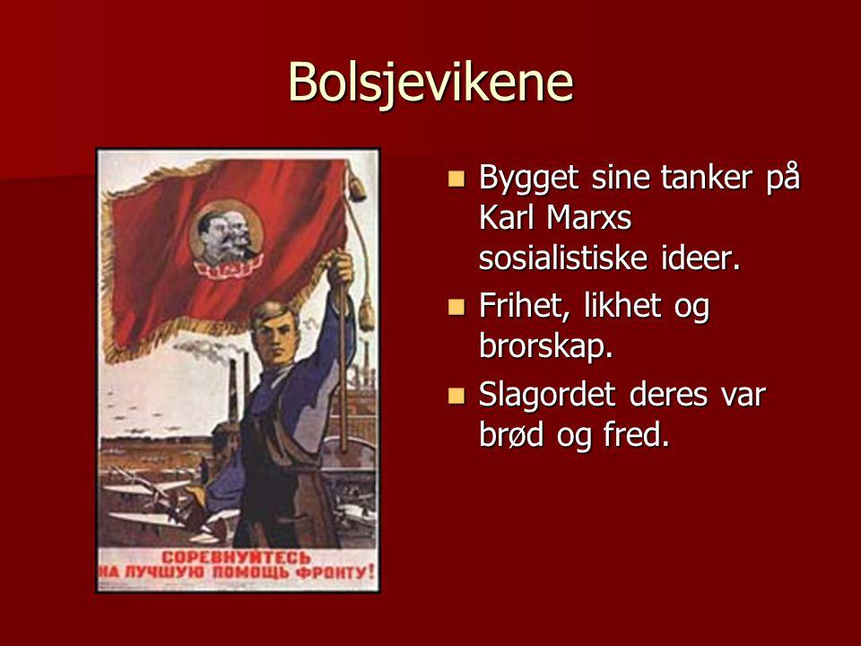 Bolsjevikene Bygget sine tanker på Karl Marxs sosialistiske ideer.