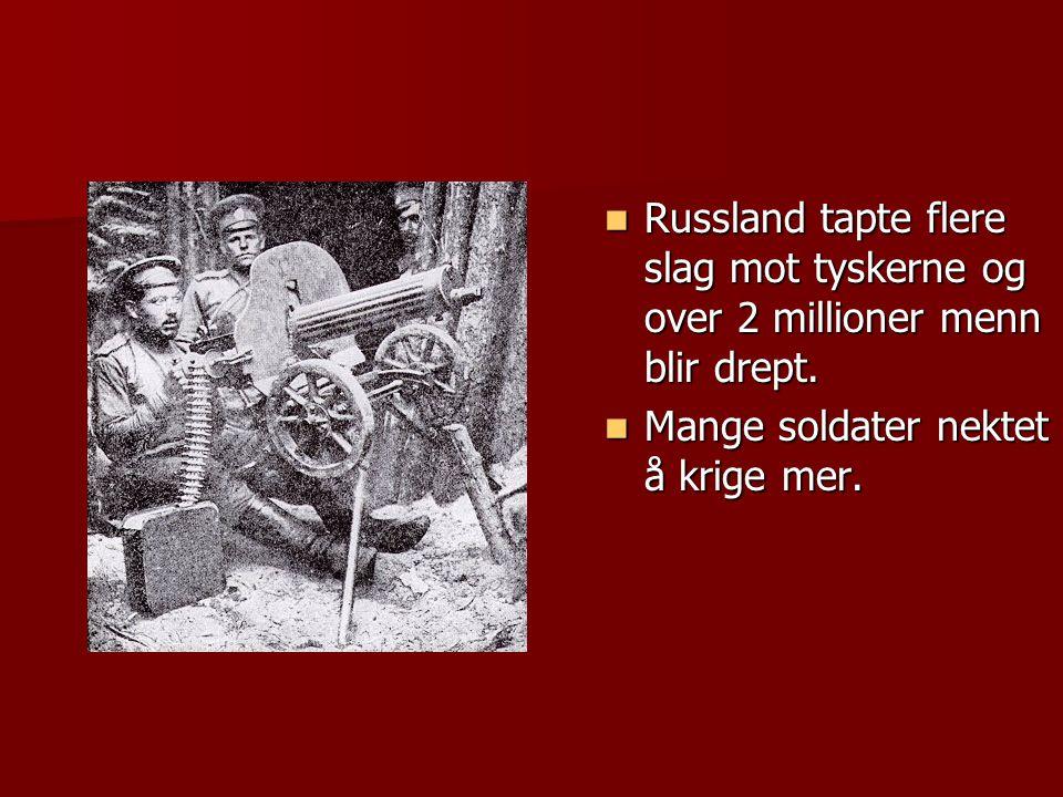 Russland tapte flere slag mot tyskerne og over 2 millioner menn blir drept.