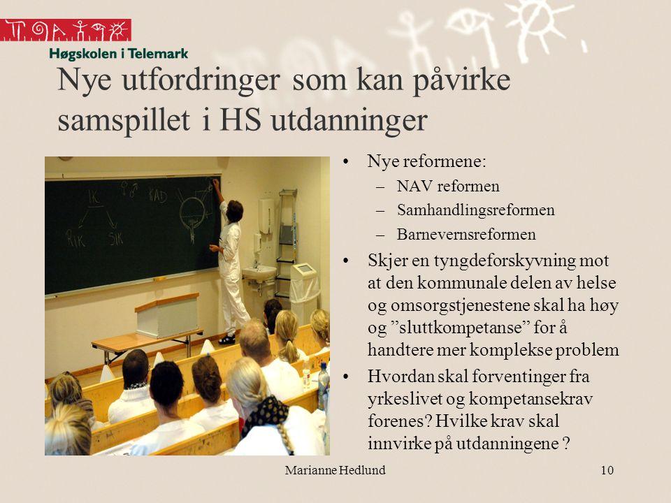 Nye utfordringer som kan påvirke samspillet i HS utdanninger