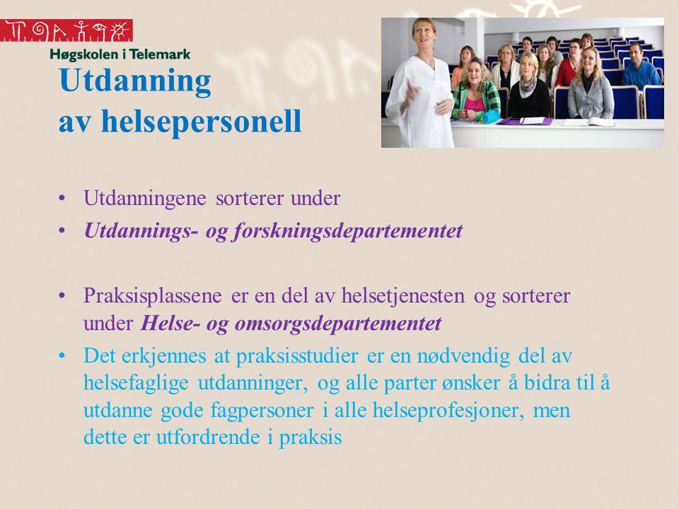 Utdanning av helsepersonell