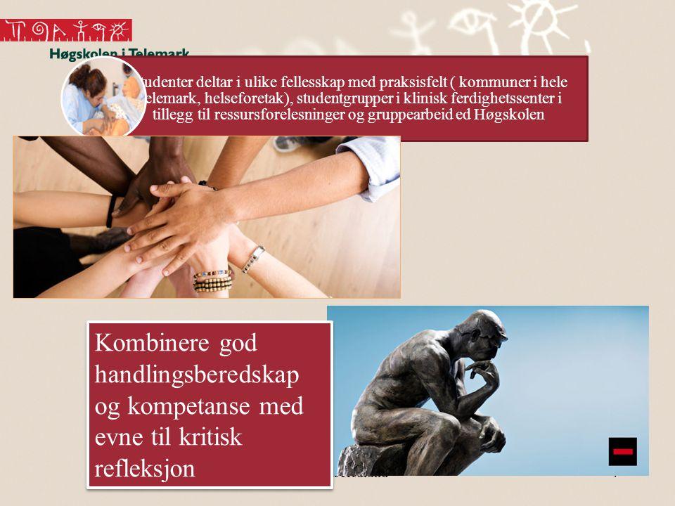 Studenter deltar i ulike fellesskap med praksisfelt ( kommuner i hele Telemark, helseforetak), studentgrupper i klinisk ferdighetssenter i tillegg til ressursforelesninger og gruppearbeid ed Høgskolen