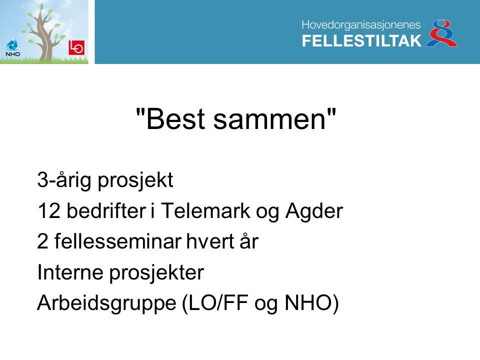 Best sammen 3-årig prosjekt 12 bedrifter i Telemark og Agder 2 fellesseminar hvert år Interne prosjekter Arbeidsgruppe (LO/FF og NHO)