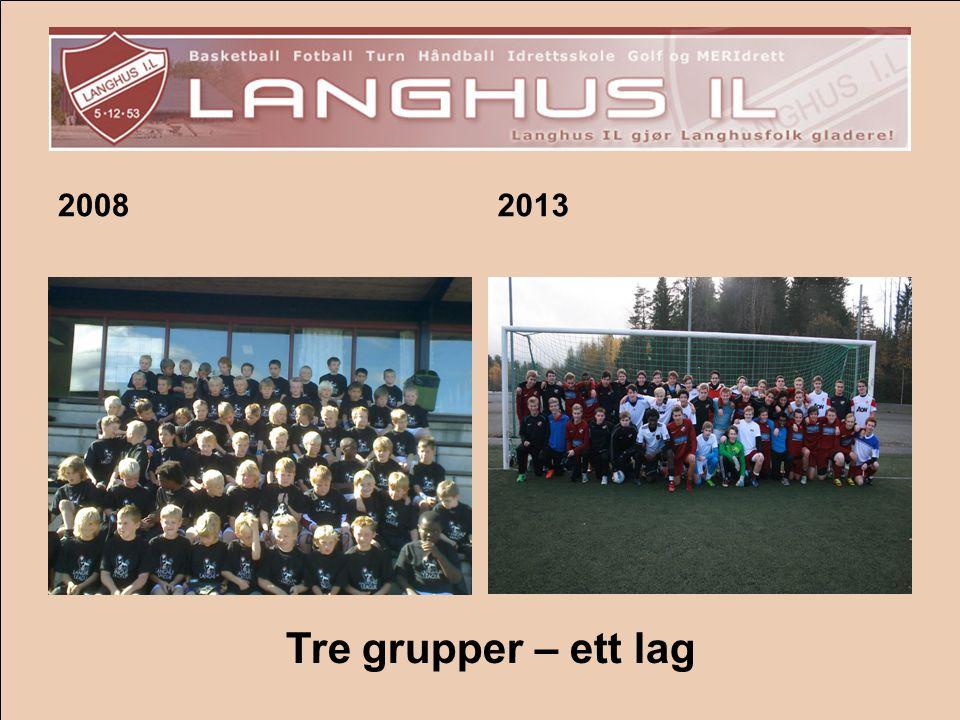 2008 2013 Tre grupper – ett lag