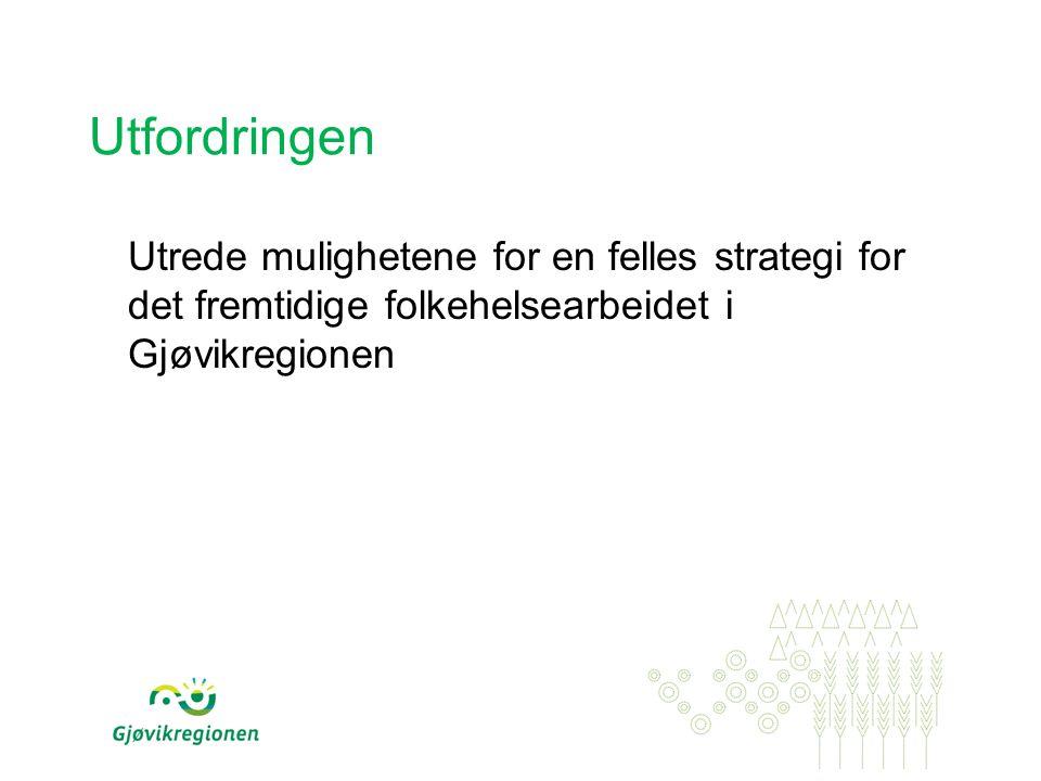 Utfordringen Utrede mulighetene for en felles strategi for det fremtidige folkehelsearbeidet i Gjøvikregionen.