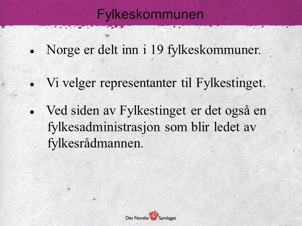 Fylkeskommunen Norge er delt inn i 19 fylkeskommuner. Vi velger representanter til Fylkestinget. Ved siden av Fylkestinget er det også en.
