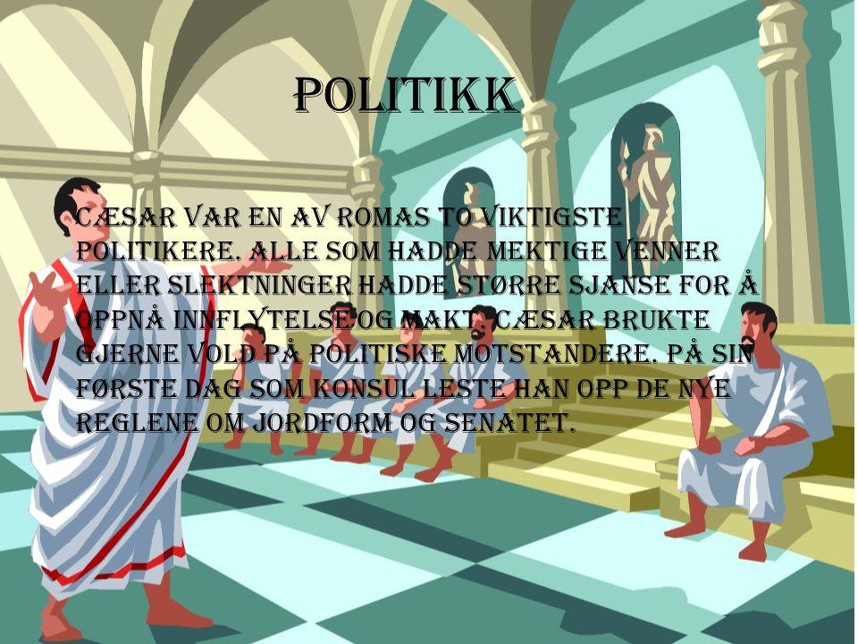 Politikk