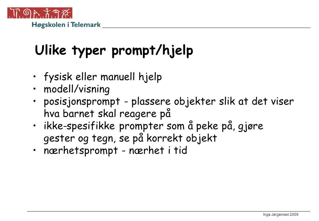 Ulike typer prompt/hjelp