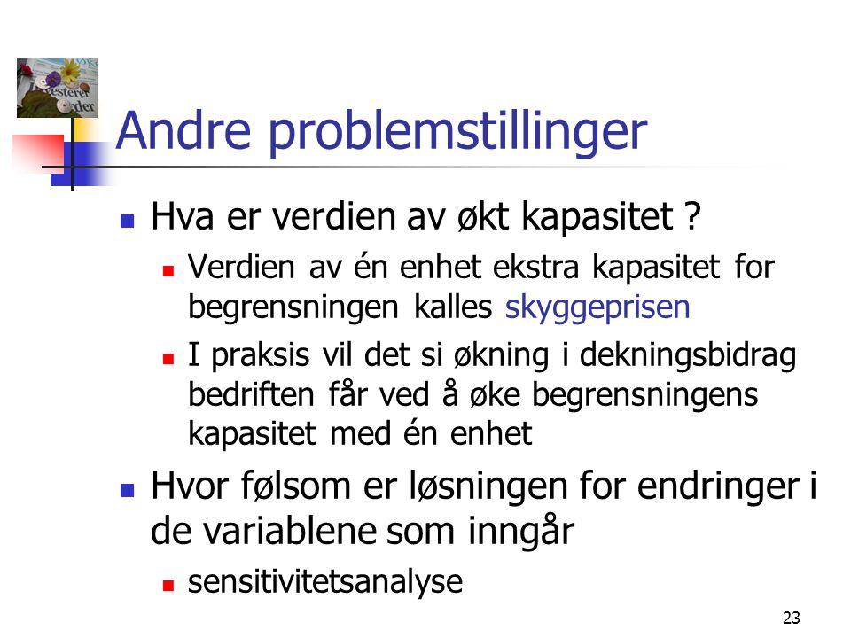 Andre problemstillinger