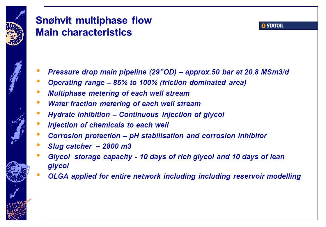 Snøhvit multiphase flow Main characteristics