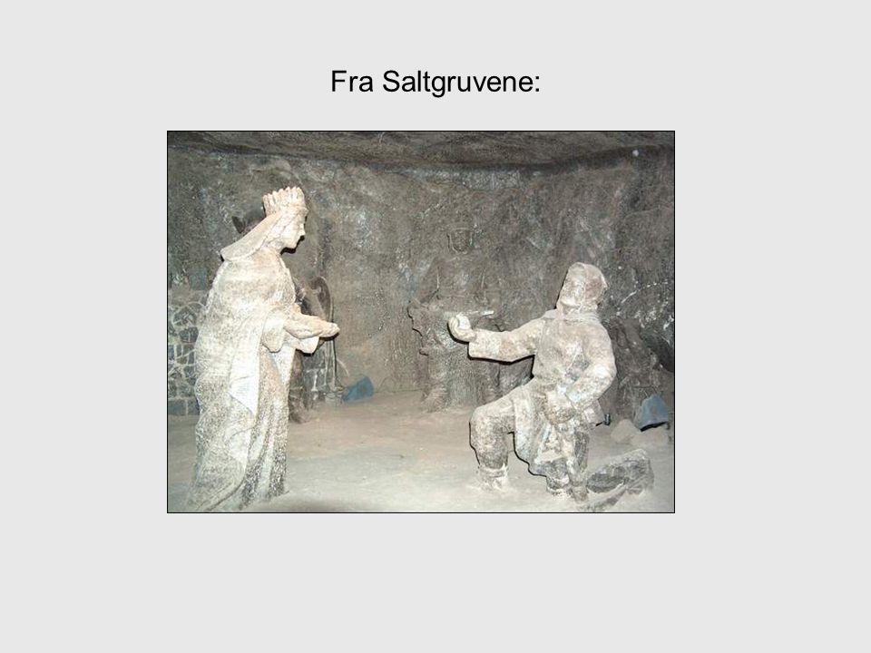 Fra Saltgruvene: