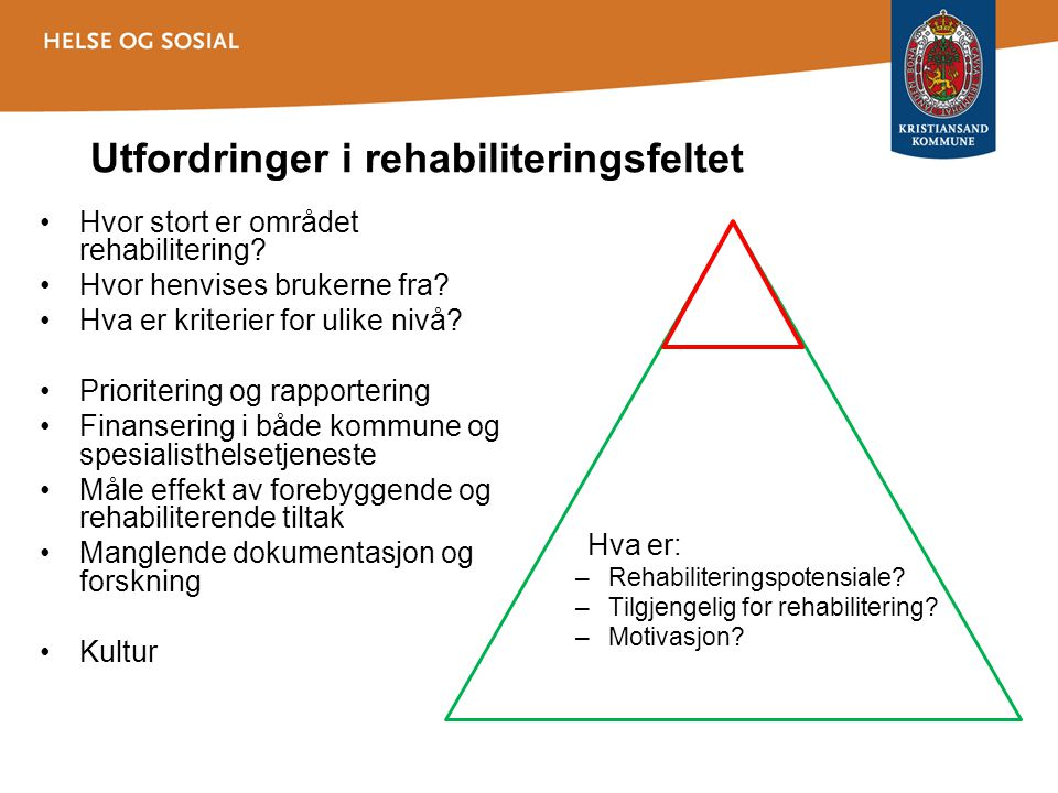 Utfordringer i rehabiliteringsfeltet