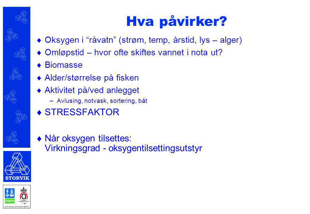 Hva påvirker STRESSFAKTOR