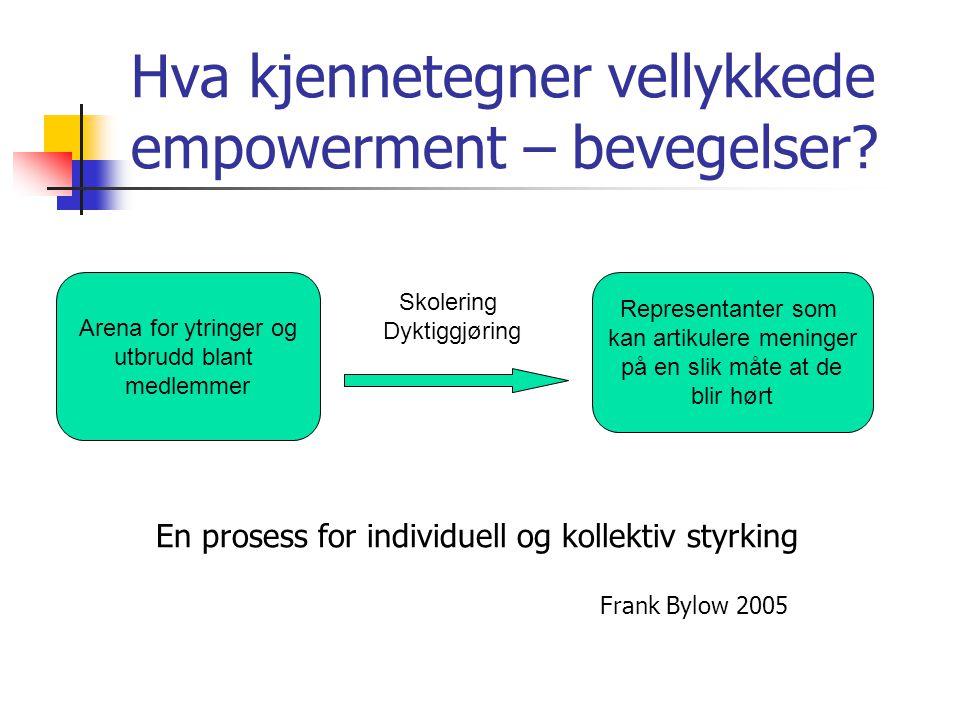Hva kjennetegner vellykkede empowerment – bevegelser