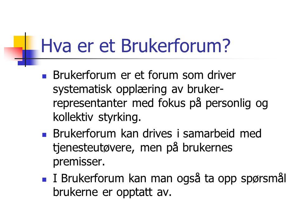 Hva er et Brukerforum