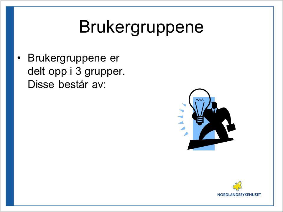 Brukergruppene Brukergruppene er delt opp i 3 grupper. Disse består av: