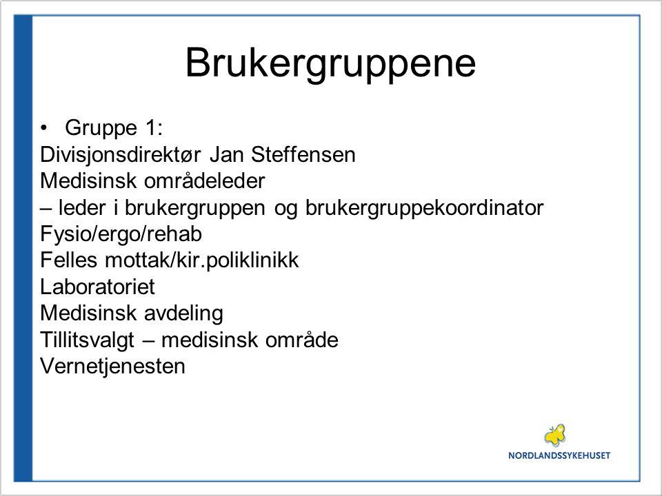 Brukergruppene Gruppe 1: Divisjonsdirektør Jan Steffensen