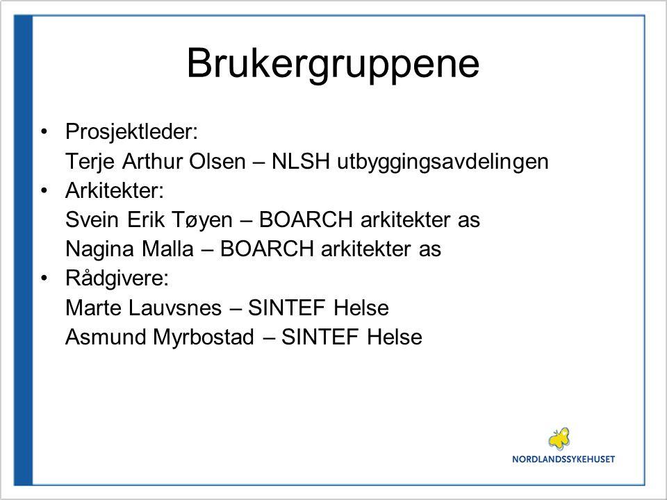 Brukergruppene Prosjektleder: