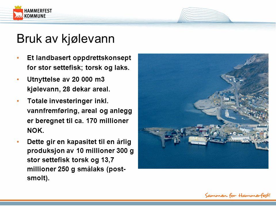 Bruk av kjølevann Et landbasert oppdrettskonsept for stor settefisk; torsk og laks. Utnyttelse av 20 000 m3 kjølevann, 28 dekar areal.