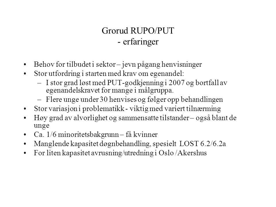 Grorud RUPO/PUT - erfaringer