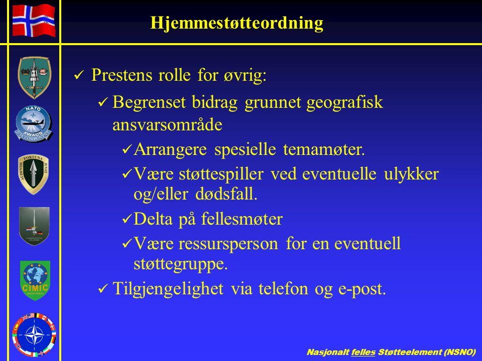 Hjemmestøtteordning Prestens rolle for øvrig: Begrenset bidrag grunnet geografisk ansvarsområde. Arrangere spesielle temamøter.