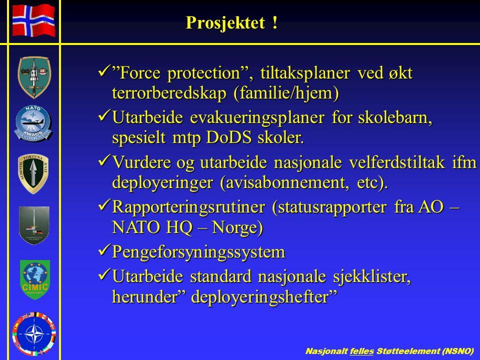 Prosjektet ! Force protection , tiltaksplaner ved økt terrorberedskap (familie/hjem)