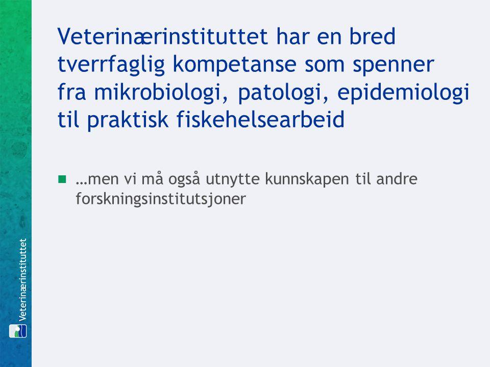 Veterinærinstituttet har en bred tverrfaglig kompetanse som spenner fra mikrobiologi, patologi, epidemiologi til praktisk fiskehelsearbeid