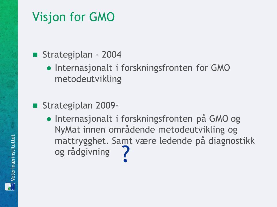 Visjon for GMO Strategiplan - 2004