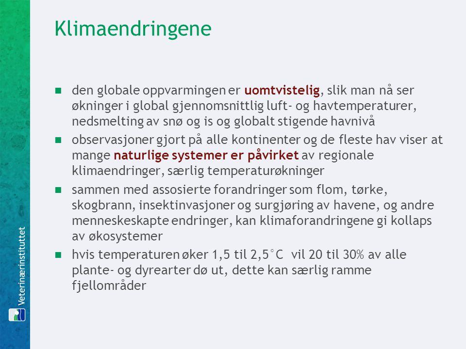 Klimaendringene
