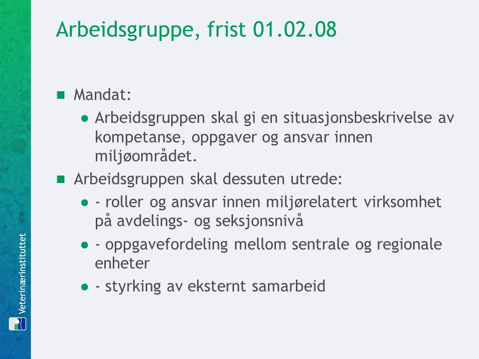 Arbeidsgruppe, frist 01.02.08 Mandat: