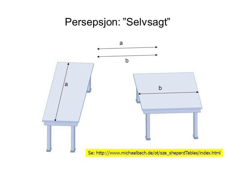 Persepsjon: Selvsagt