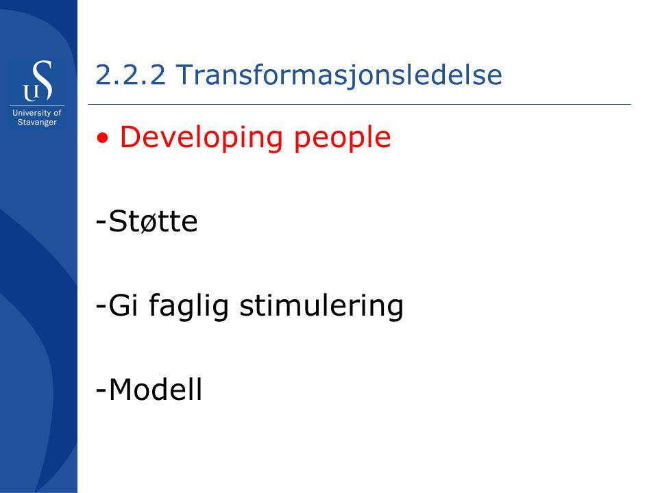 2.2.2 Transformasjonsledelse