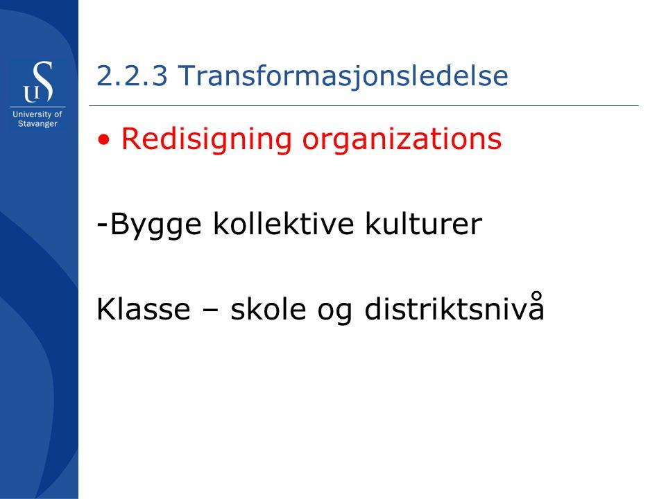 2.2.3 Transformasjonsledelse