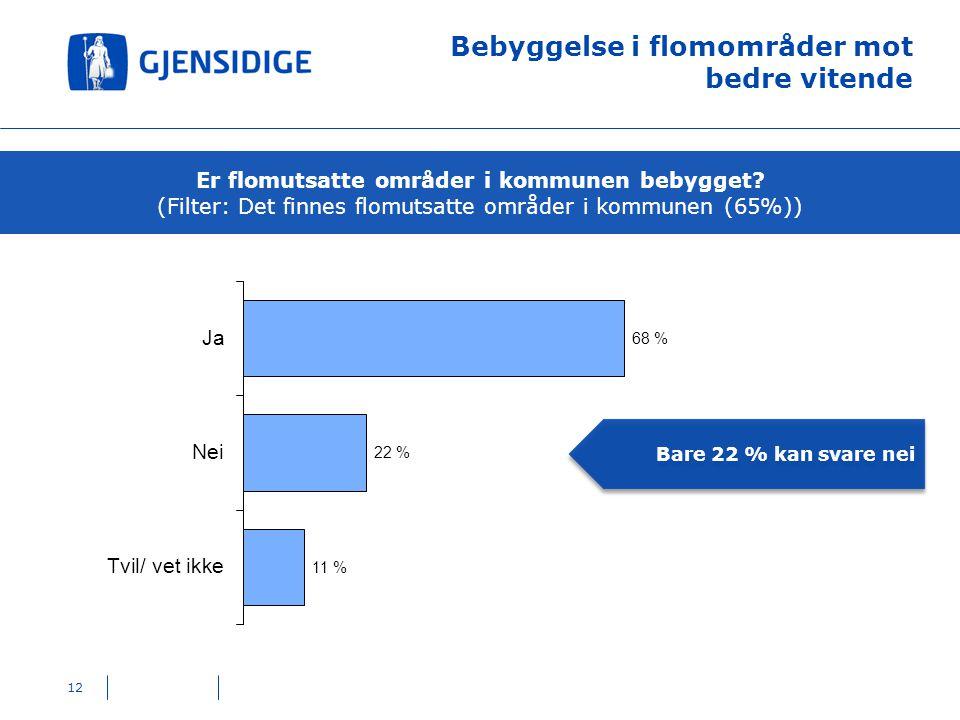 (Filter: Det finnes flomutsatte områder i kommunen (65%))