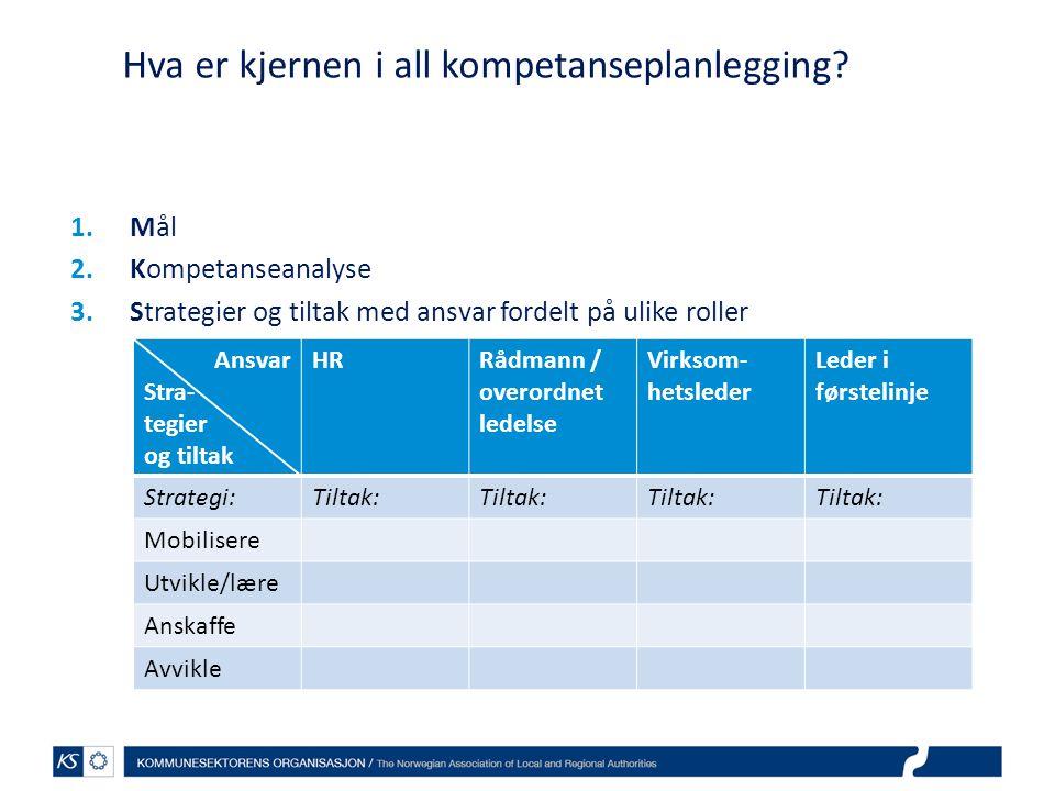 Hva er kjernen i all kompetanseplanlegging