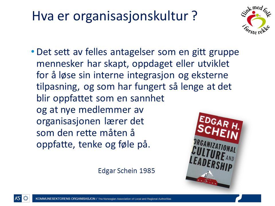 Hva er organisasjonskultur