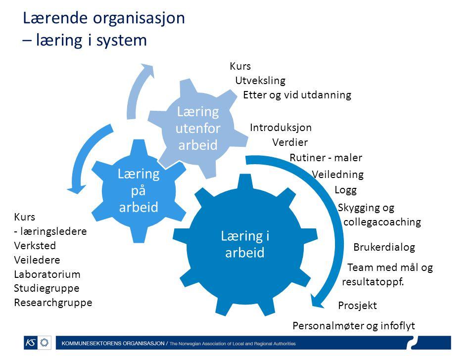 Lærende organisasjon – læring i system