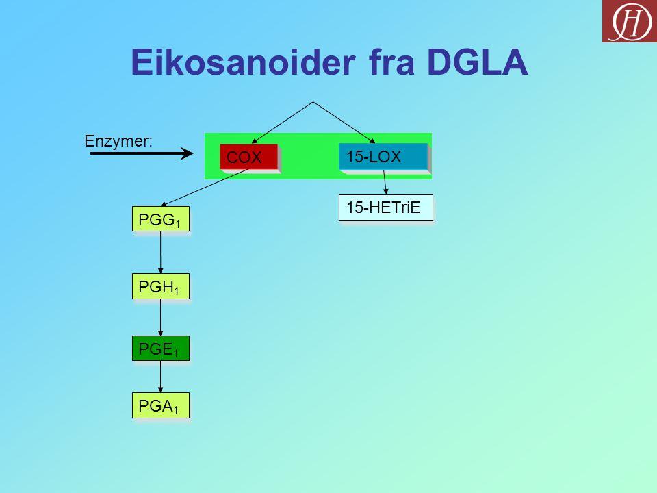 Eikosanoider fra DGLA Enzymer: COX 15-LOX 15-HETriE PGG1 PGH1 PGE1