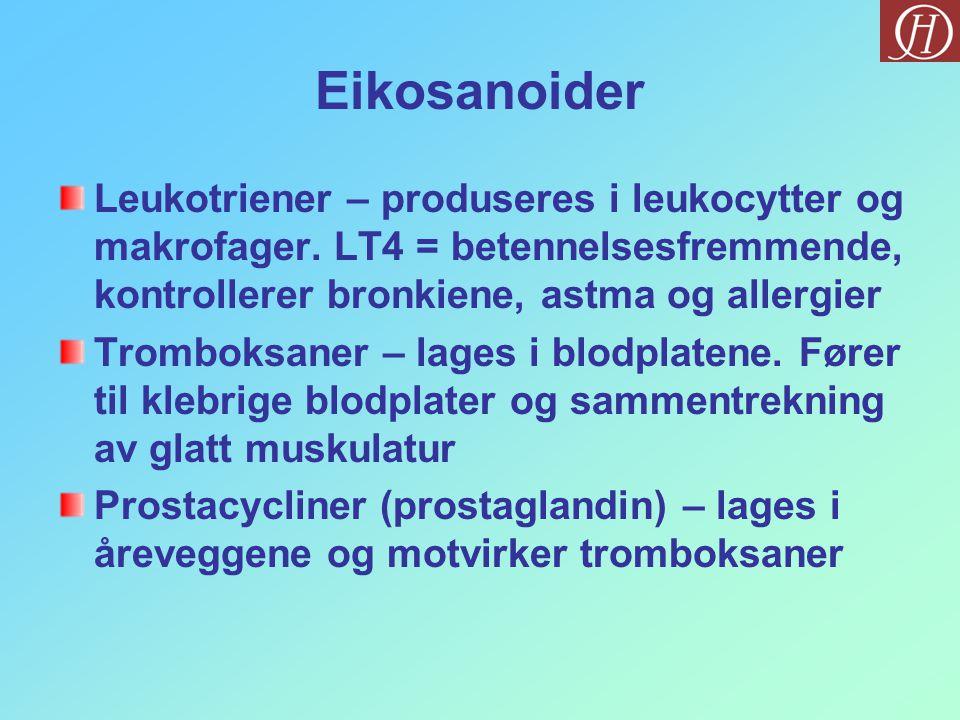 Eikosanoider Leukotriener – produseres i leukocytter og makrofager. LT4 = betennelsesfremmende, kontrollerer bronkiene, astma og allergier.