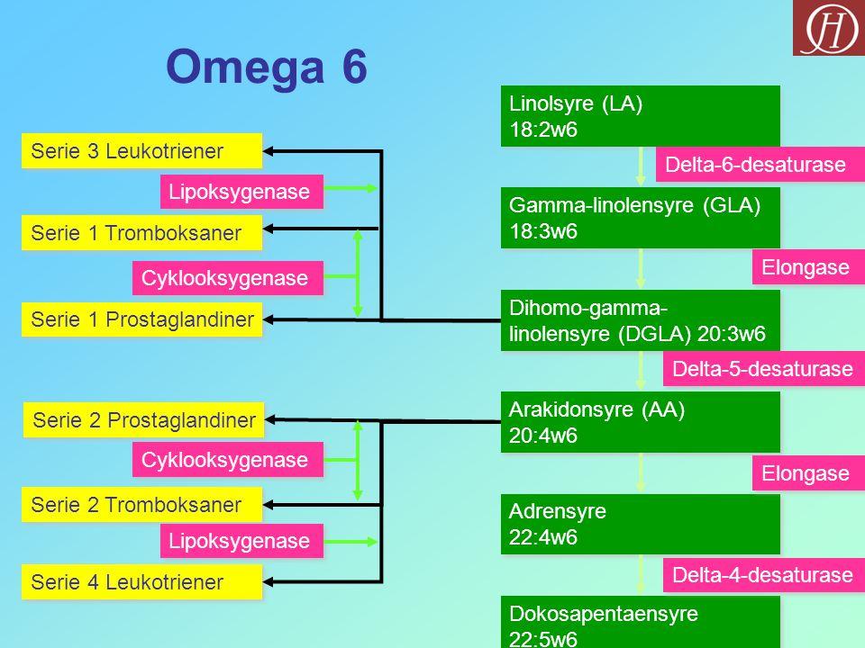 Omega 6 Linolsyre (LA) 18:2w6 Serie 3 Leukotriener Delta-6-desaturase