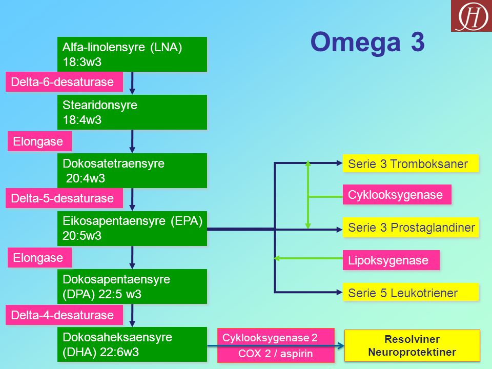 Omega 3 Alfa-linolensyre (LNA) 18:3w3 Delta-6-desaturase Stearidonsyre