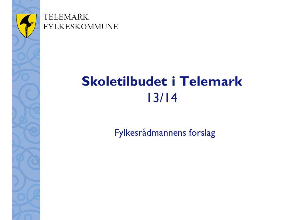 Skoletilbudet i Telemark 13/14