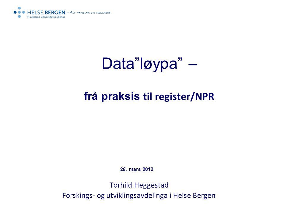 Data løypa – frå praksis til register/NPR