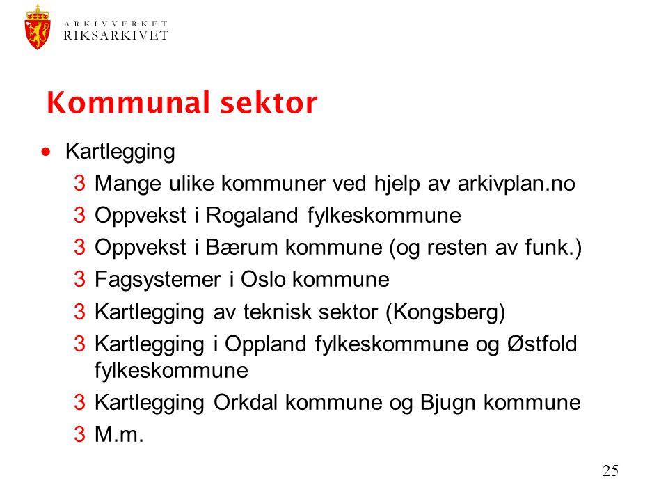 Kommunal sektor Kartlegging