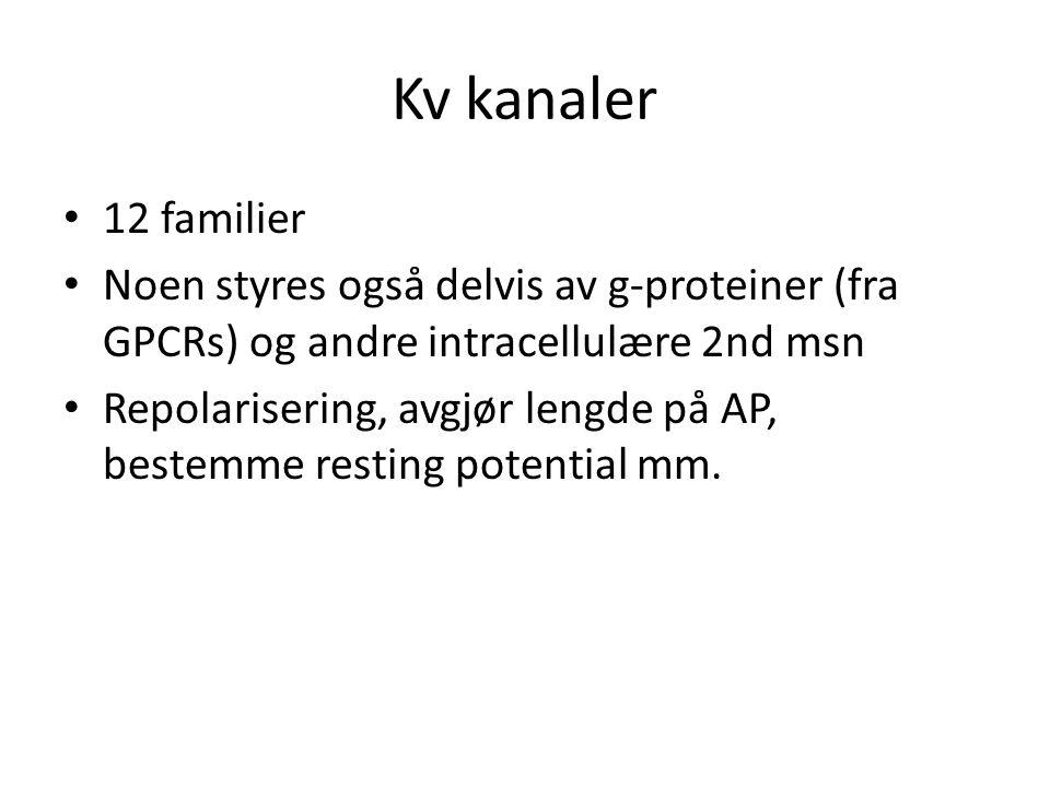 Kv kanaler 12 familier. Noen styres også delvis av g-proteiner (fra GPCRs) og andre intracellulære 2nd msn.