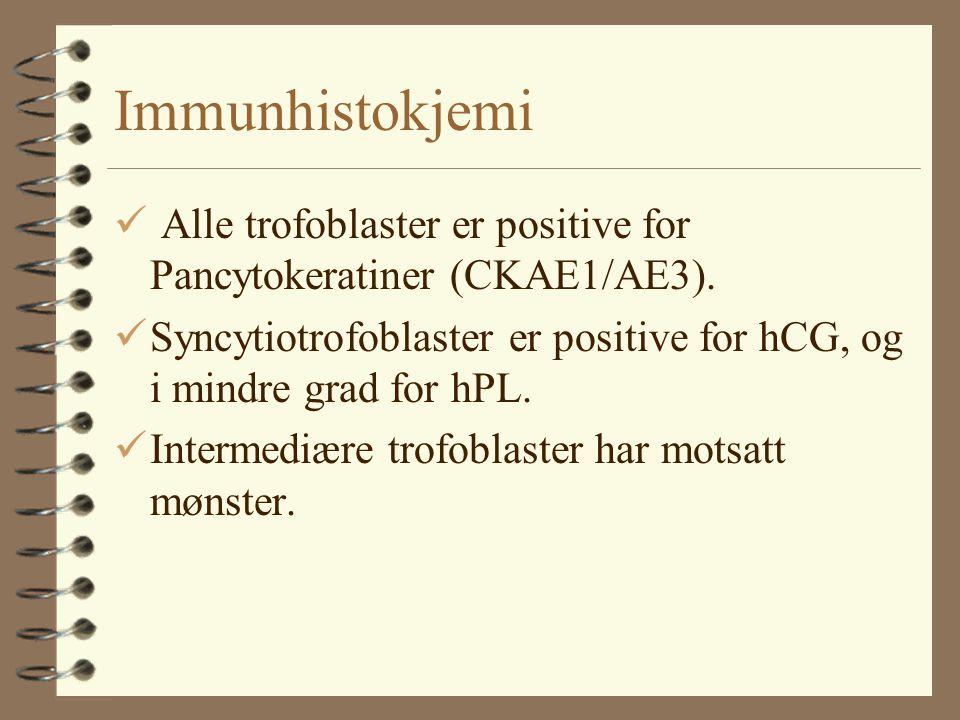 Immunhistokjemi Alle trofoblaster er positive for Pancytokeratiner (CKAE1/AE3). Syncytiotrofoblaster er positive for hCG, og i mindre grad for hPL.