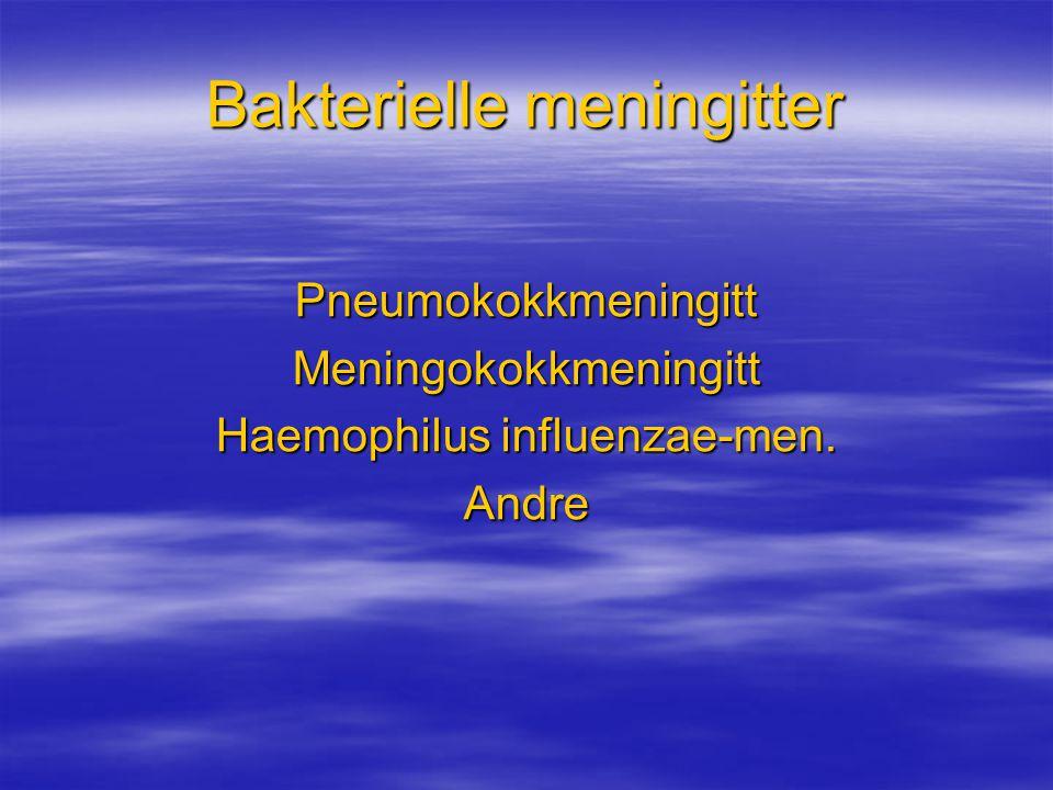 Bakterielle meningitter