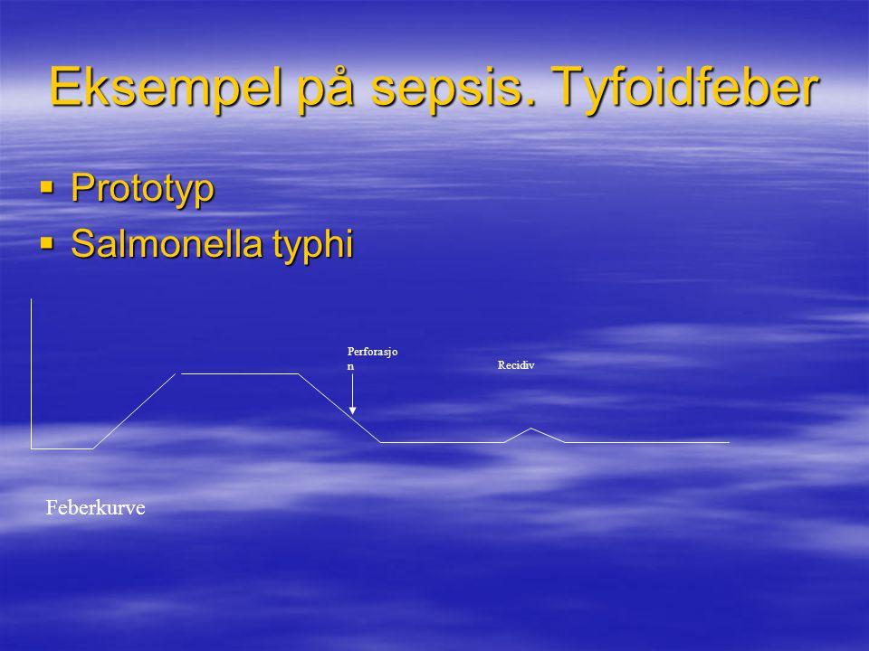 Eksempel på sepsis. Tyfoidfeber