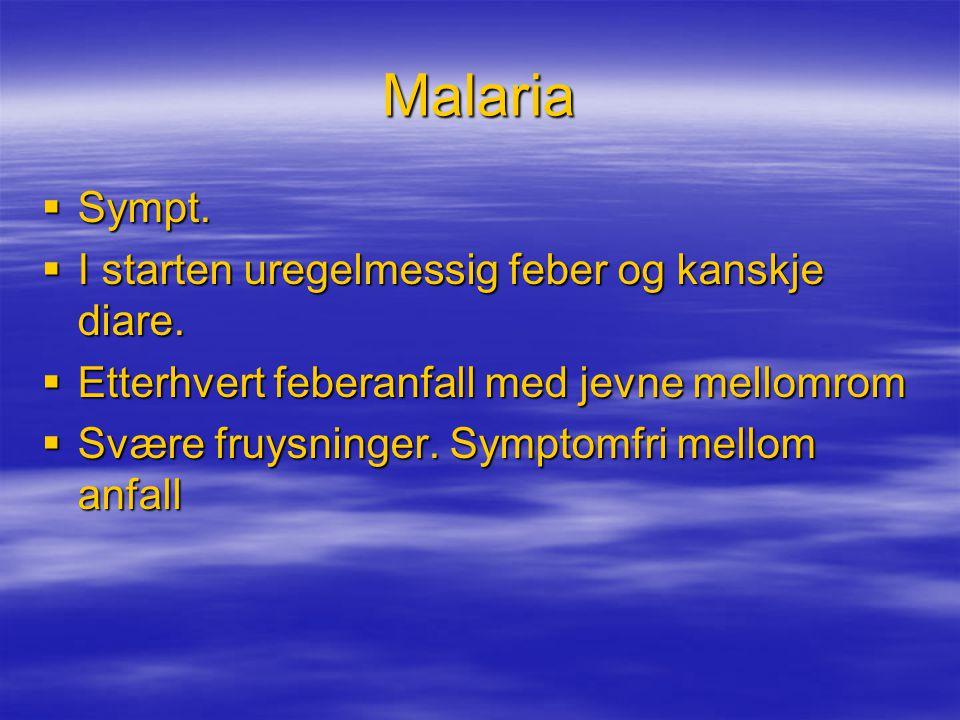 Malaria Sympt. I starten uregelmessig feber og kanskje diare.