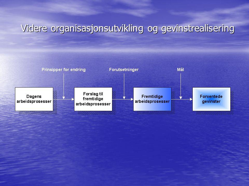 Videre organisasjonsutvikling og gevinstrealisering