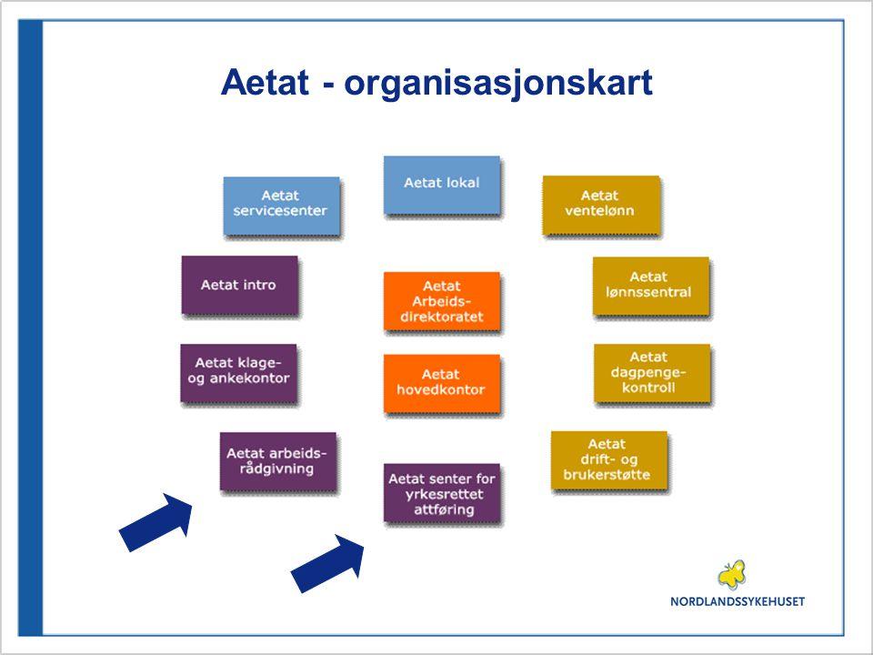 Aetat - organisasjonskart